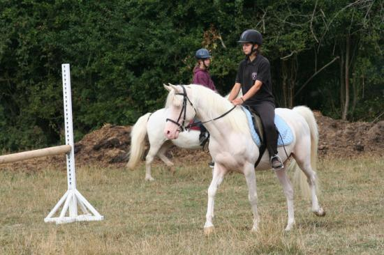Nadasy concours loisir 08/2010